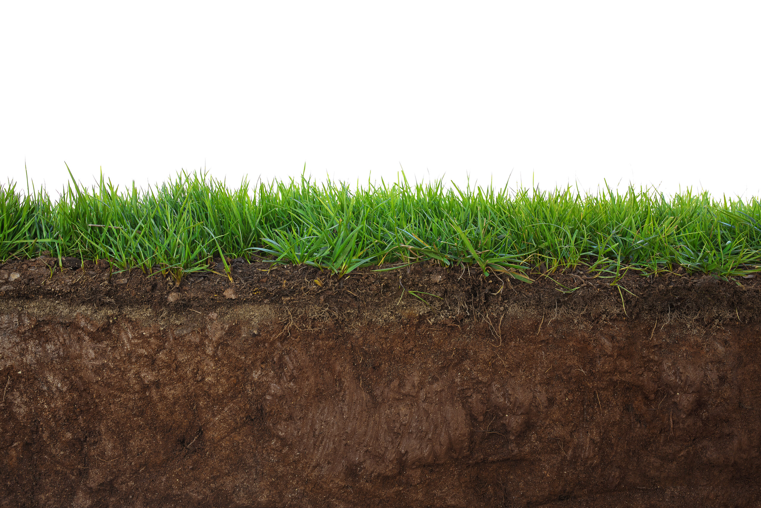 The importance of geotechnical reports and soil classification for footings